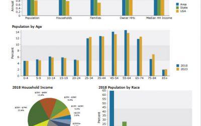 Using Demographics in Business Brokerage